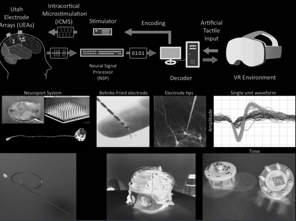 Motor‐parietal cortical neuroprosthesis with somatosensory feedback for restoring hand and arm functions in tetraplegic patients