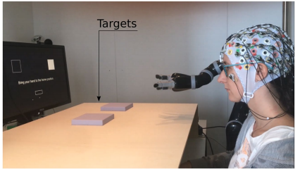 JournalClub: Online asynchronous decoding of error-related potentials during the continuous control of a robot